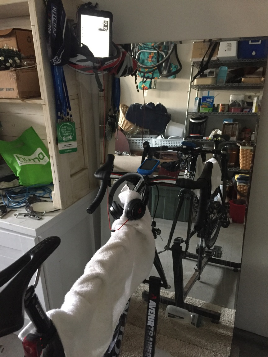 Indoor Cycling: Can You Train Without a PowerMeter?